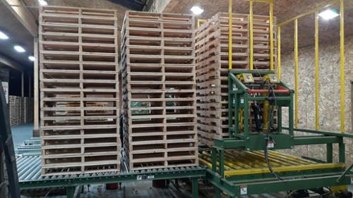 Built pallets staged on the roll out rollers and pallets collecting in the pallet stacker.